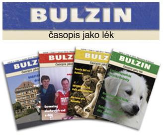 bulzin